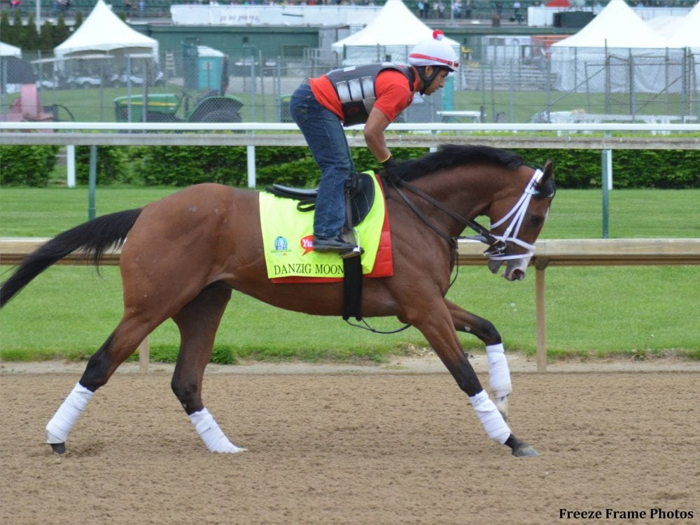 Preakness News Notes May 9 Danzig Moon Confirmed For Race