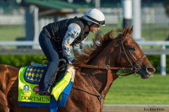 Dortmund is ready for his first start since finishing fourth in the Breeders' Cup Dirt Mile.