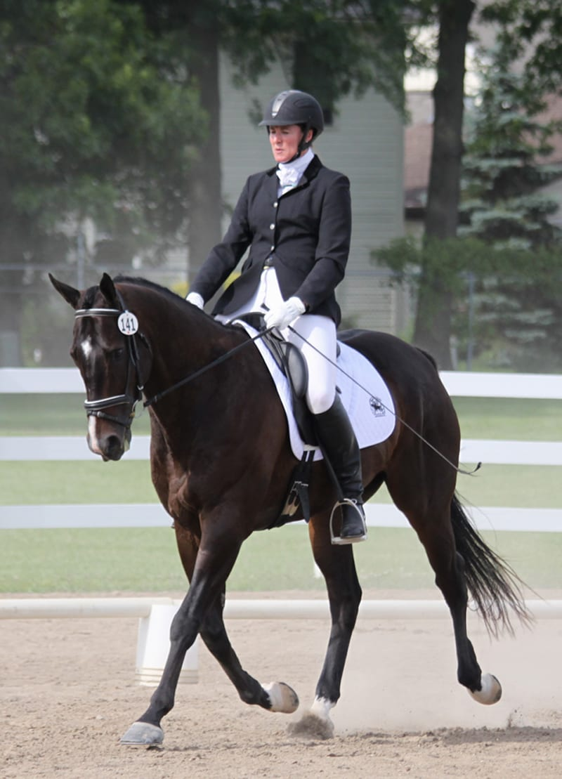 Thoroughbreds Take Center Stage At Horse Shows In Both