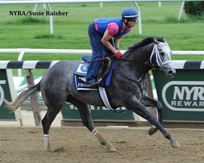 Frosted gallops at Belmont Park May 27