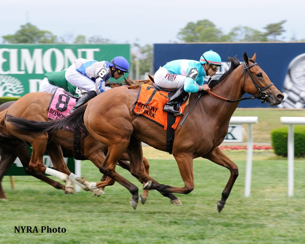 Lady Eli Rallies For Wonder Again Victory Horse Racing