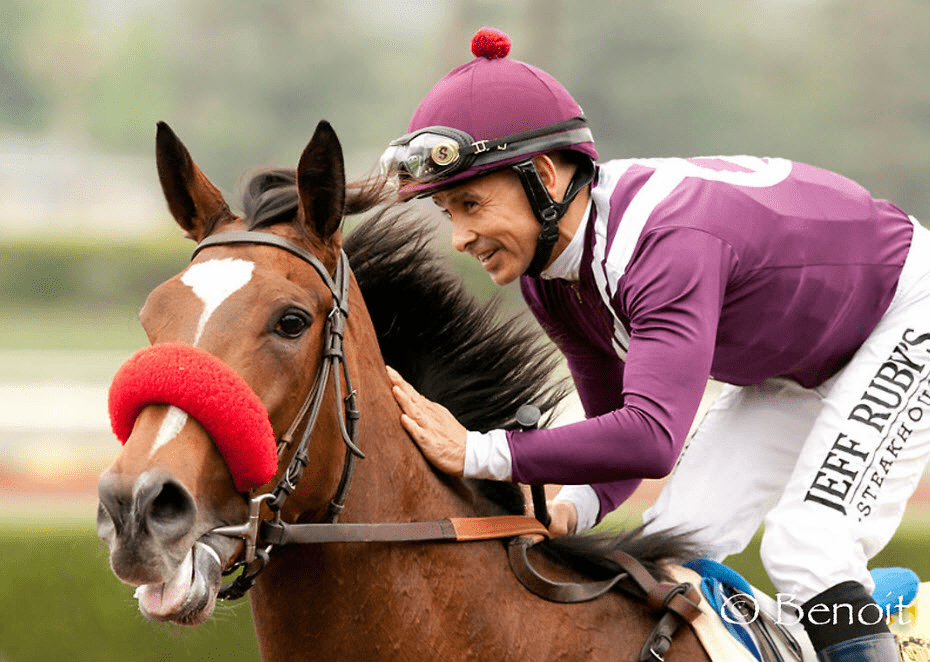 Breeders Cup Presents Connections Sweet Success Horse