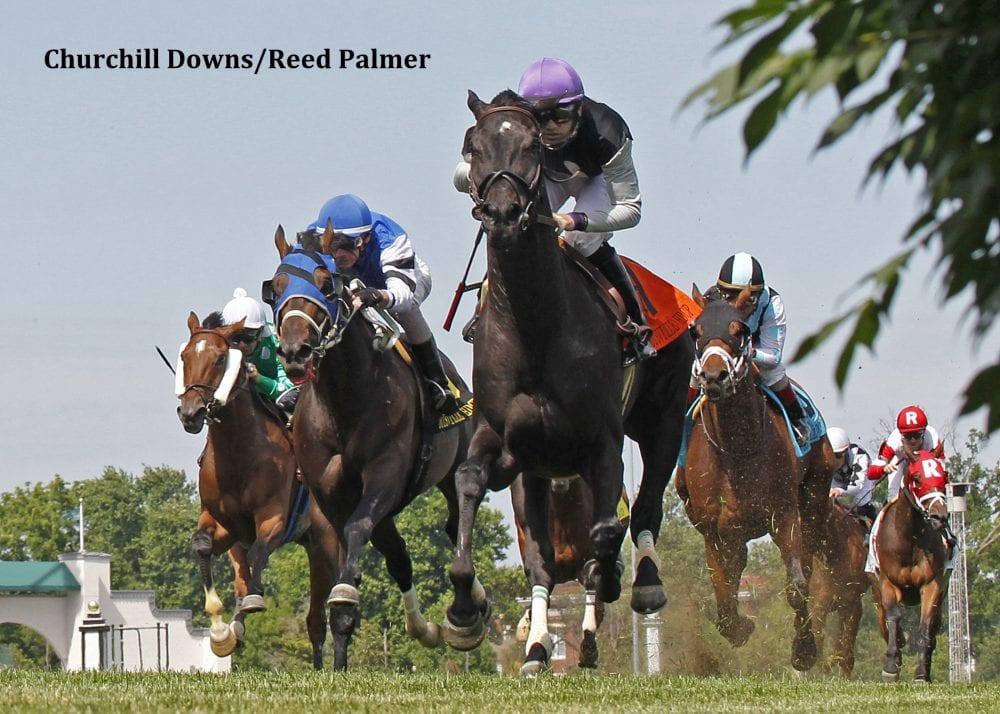Xtra Luck Steps Up For Louisville Handicap Score Horse