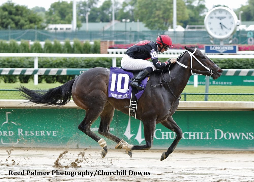 Street Story Proves Best In Winning Colors Horse Racing