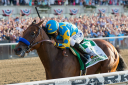 American Pharoah charges to victory in the Belmont Stakes