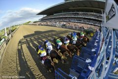 """NYRA senior vice president Martin Panza said the starting gate crew seeks to provide """"consistency for the gambling public"""""""