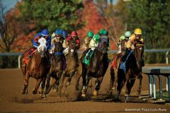 Fall racing at Keeneland