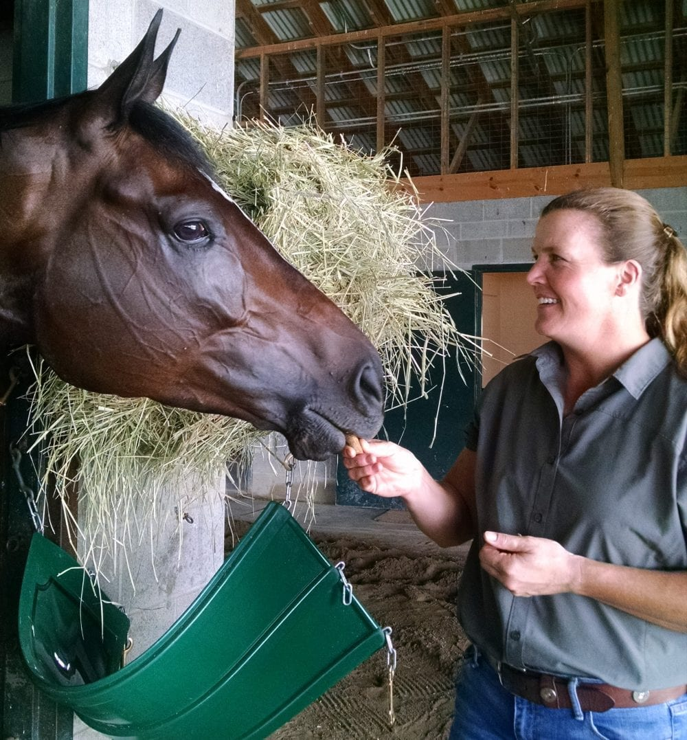 breeders cup presents connections learning from the horses vicki oliver feeds a cookie to distaff contender frivolous at their base at keeneland