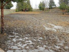 Mud from rain