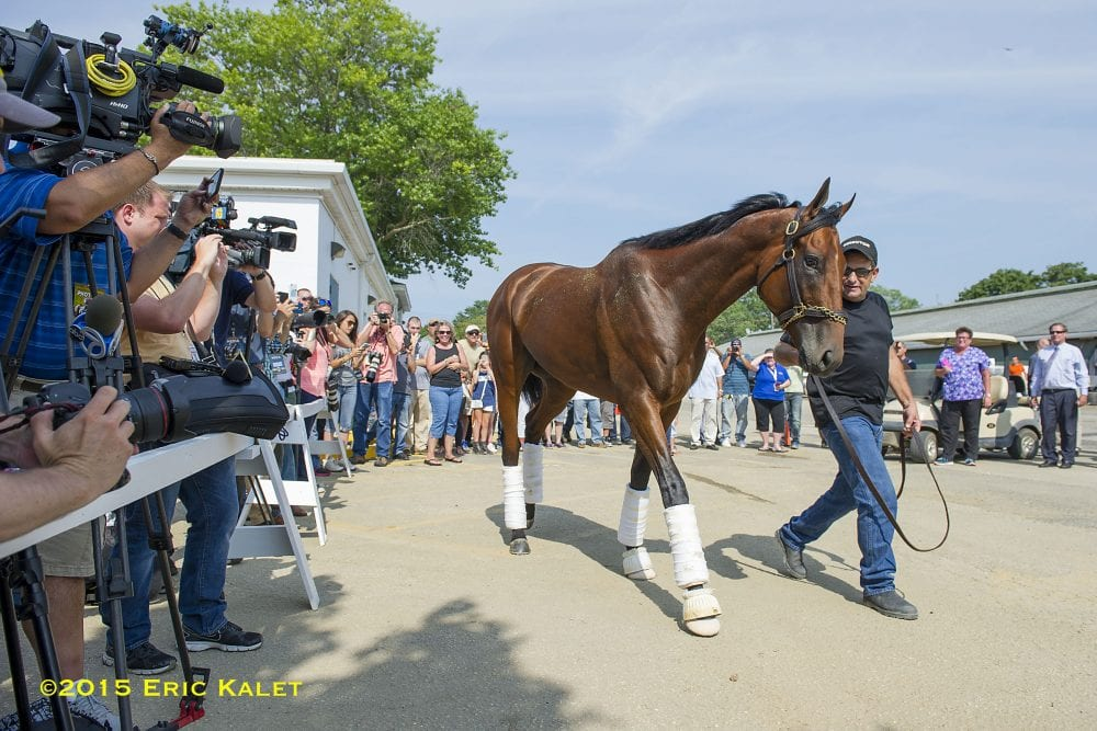 Air Horse One Pharoah Touches Down In New Jersey Horse
