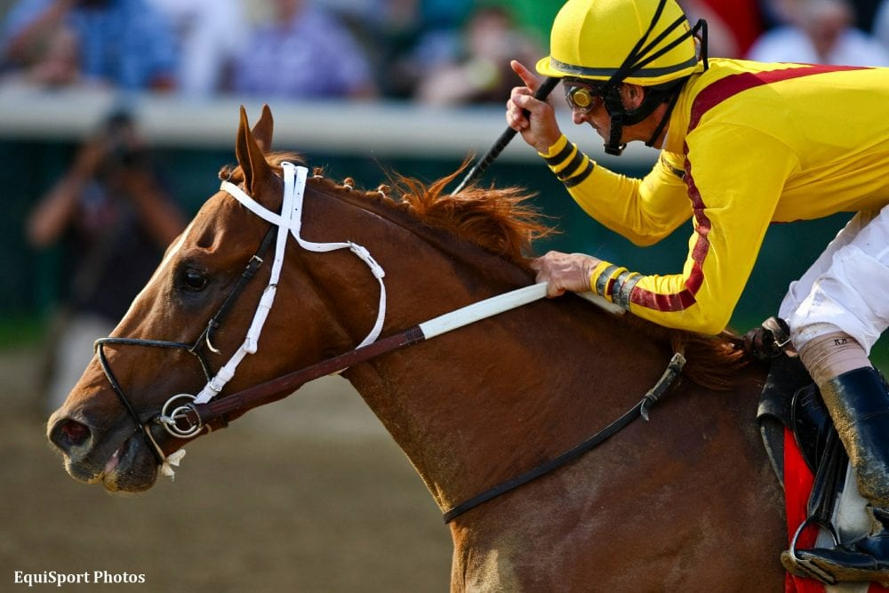 Curlin Relocating To Hill N Dale Horse Racing News