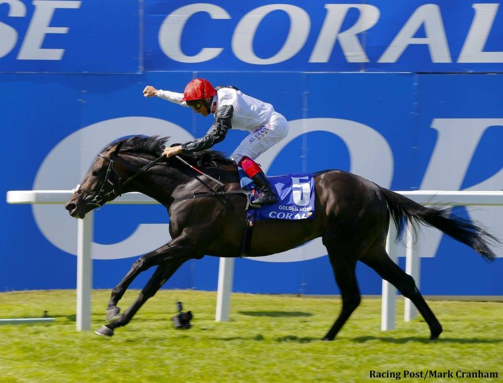 Golden Horn To Join Darley Stallion Roster In 2016 Horse
