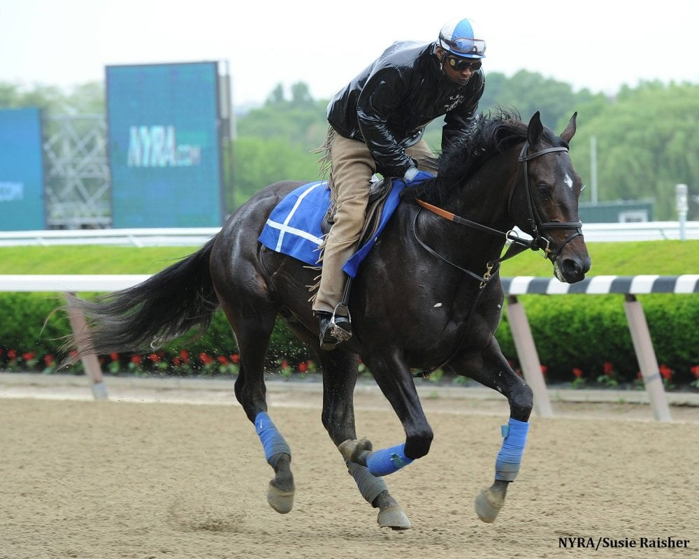 Take Two Cozmic One Looks To Improve In Second Career