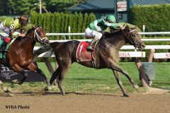 Is morning line favorite Exaggerator vulnerable in the Jackpot?