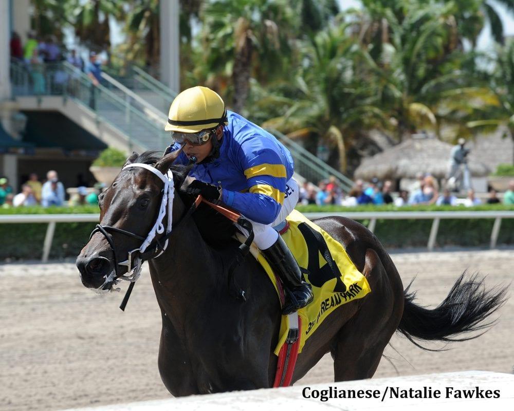 It S High Time Rolls To Desert Vixen Upset Horse Racing