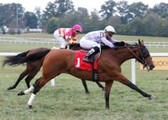 Modernstone gets up late to win her and Rubley's first stakes race