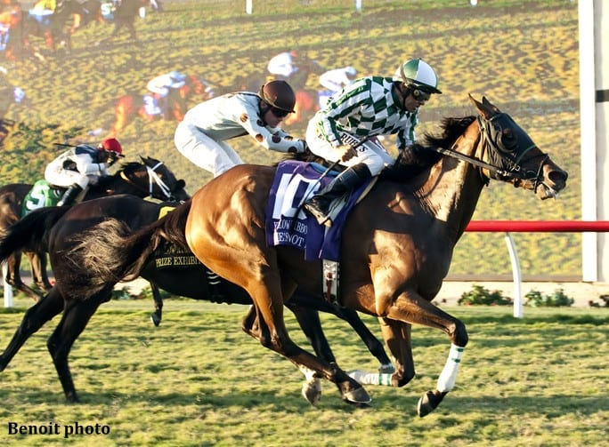 Route de la Breeders' Cup 2015 - Page 2 Shes-Not-Here_Yellow-Ribbon-684x503