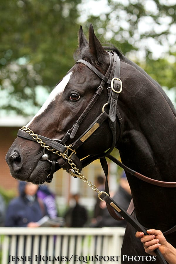Mcgaughey Pleased With Honor Code Work Headed Into Classic