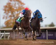 Runhappy (outside) cruises past Private Zone to win the 2015 Breeders' Cup Sprint.