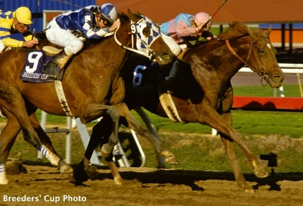 Keeneland Select Presents Breeders Cup Photo Finishes