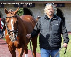 Tapiture schools in the paddock at Keeneland with trainer Steve Asmussen.