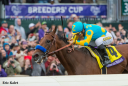 American Pharoah en route to victory in the Breeders' Cup Classic.