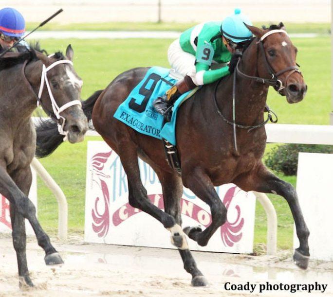 Route du Kentucky Derby/Kentucky Oaks 2016 Exaggerator_Delta-Jackpot-684x611