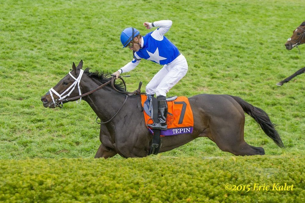 Equibase Analysis Tepin Seeking Eighth Straight Win In