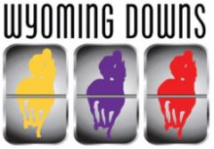 WyomingDowns logo