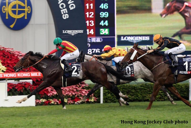hong kong jockey club Latest jobs at the hong kong jockey club - view all the job openings and apply now to grow your career.