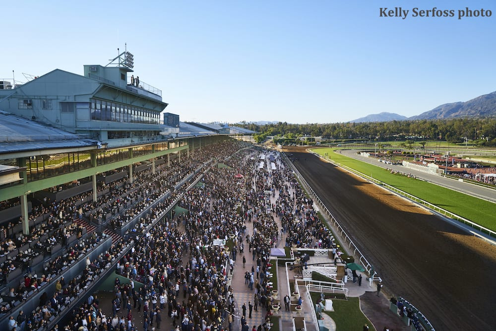 Santa Anita Opening Day On Track Numbers A Mixed Bag