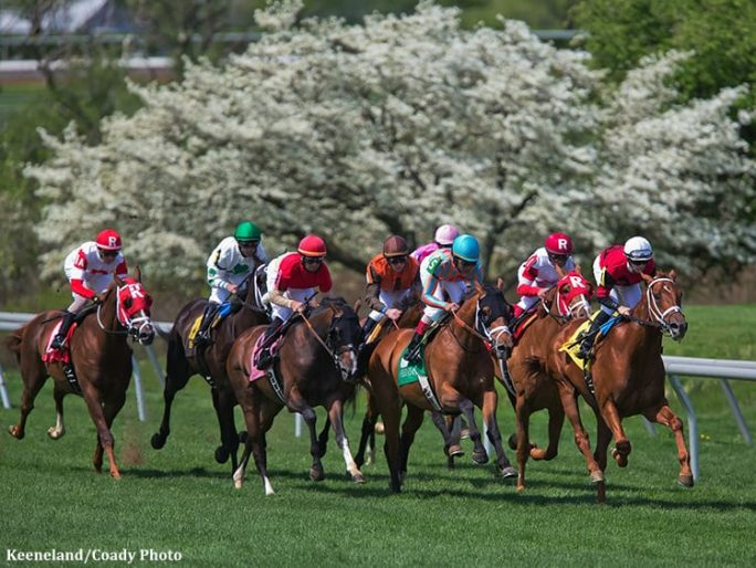 Toyota Blue Grass Ashland Stakes Anchor Strong Keeneland