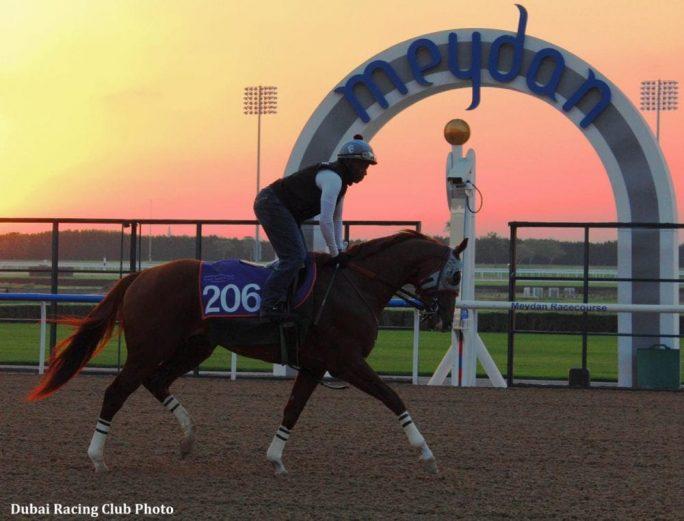 California Chrome, star of 2014, cruises to win in Dubai