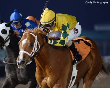 Bravura Earns Horse Of The Meet Title At Sam Houston