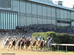 Racing at Oaklawn Park