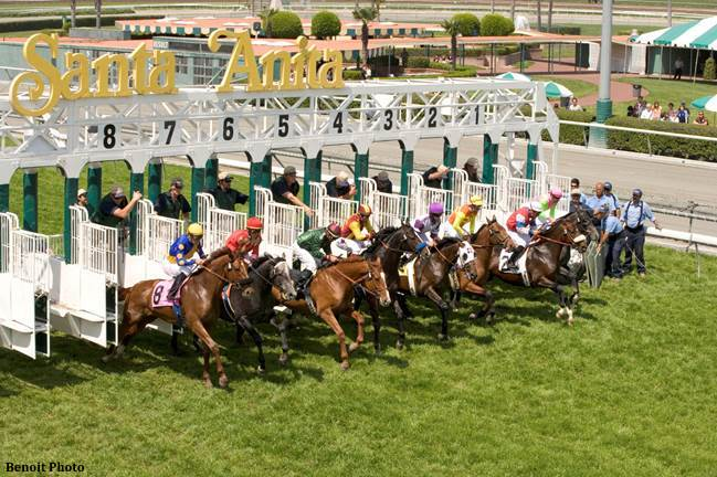 Handle Declines, Attendance Up Slightly During Santa Anita Winter ...