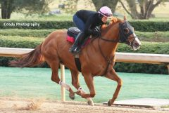 Whitmore, seen training earlier this spring at Oaklawn