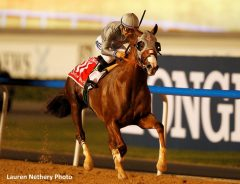 Will there be a bidding war to attract California Chrome later this year?