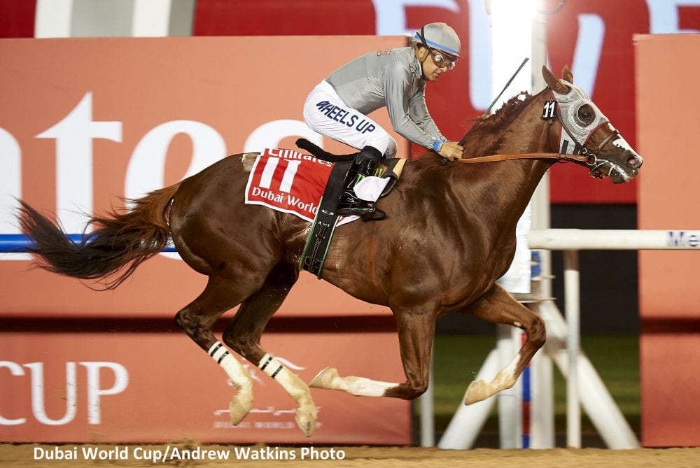 California Chrome wins Dubai World Cup by 5 lengths