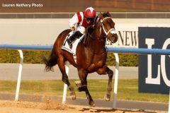 sheikh saeed bin mohammed al maktoum Archives - Horse Racing