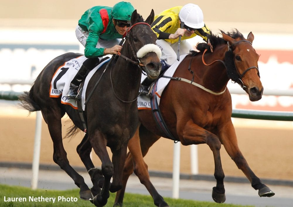 Dubai World Cup Undercard Track Records Fall Japanese