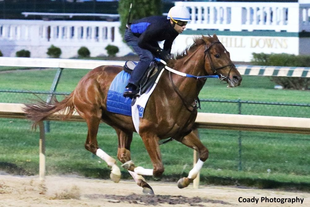 I Am Thoroughbred, Hear Me Roar - Horse Racing News