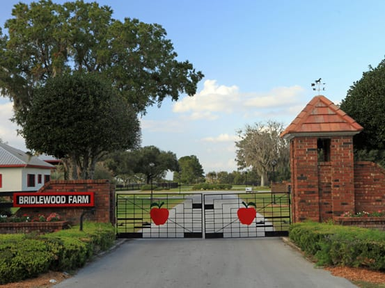AHC Study: Economic Impact Of Florida Horse Industry Up 33