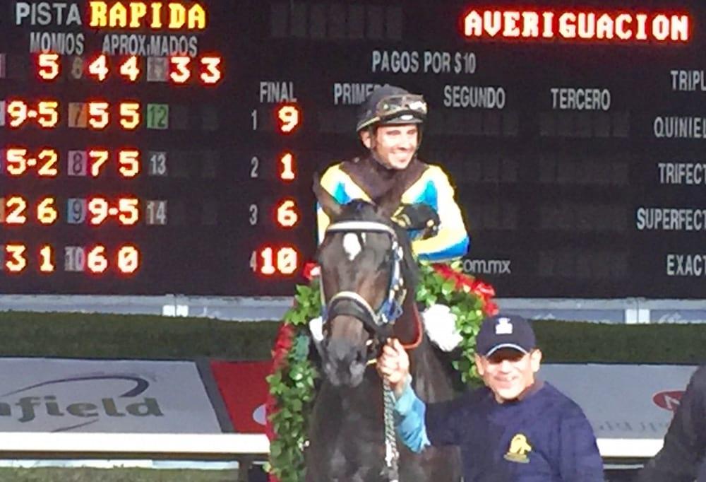Diamante Negro Wins Handicap De Las Americas Third Year In A