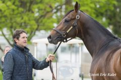 Keith Desormeaux with Exaggerator