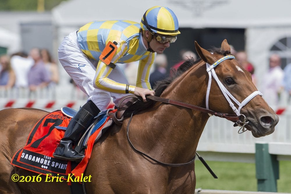 Stallion Making Met Mile Field Loaded With Talent