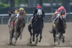Cavorting (left) battles with Carrumba (red cap) in the G2 Ruffian