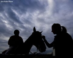 Penelope Miller of Americas Best Racing pets an outrider's horse during Sunrise at Old Hilltop at Pimlico Race Course in Baltimore, Maryland.