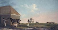 In the old days, determining a horse's status as a colt or gelding was less technical, as this George Stubbs portrait attests