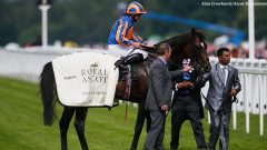 Order of St George after winning the 2016 Ascot Gold Cup
